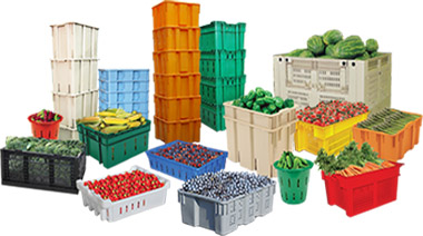Harvest plastic containers, picking baskets and bins